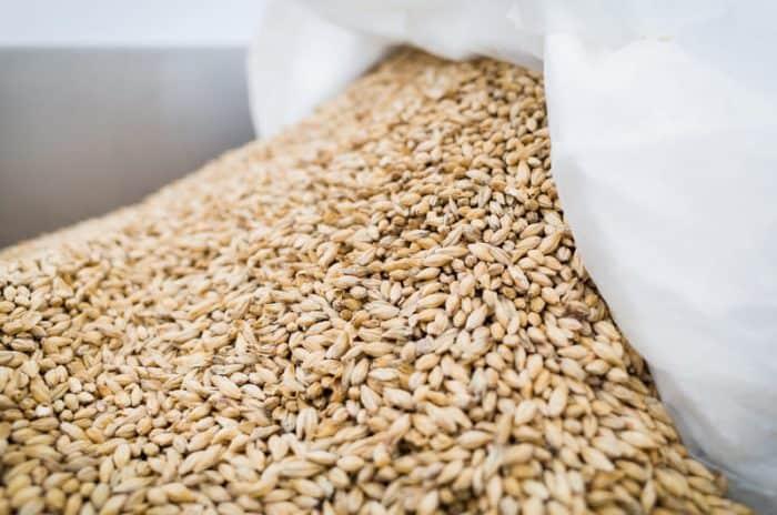 Ingredienti della birra: quali sono i principali e come cambiano per le diverse produzioni.